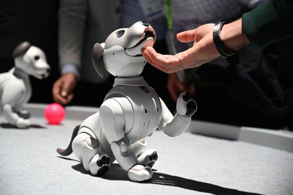 Les 29: Robot huisdieren